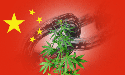 Chinese blockchain investor revamps business plan towards industrial cannabis, in wake of bitcoin rout